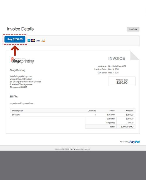 Pay Using PayPal Step 2